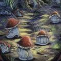 Leaping toadstools (cropped).jpg
