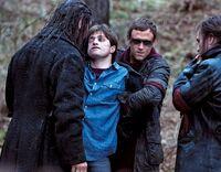 Сивый, неизвестный егерь и Струпьяр осматривают Гарри