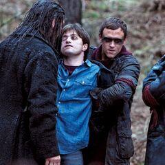 Сивый и Струпьяр осматривают обезображенного Гарри