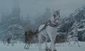 Hogwarts horse band.png