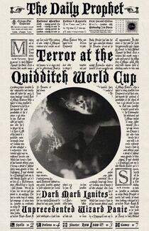 Terror na Copa Mundial de Quadribol