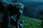 Harrypotter weerwolf a