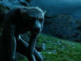 Weerwolf