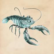 Lagerwalkrab