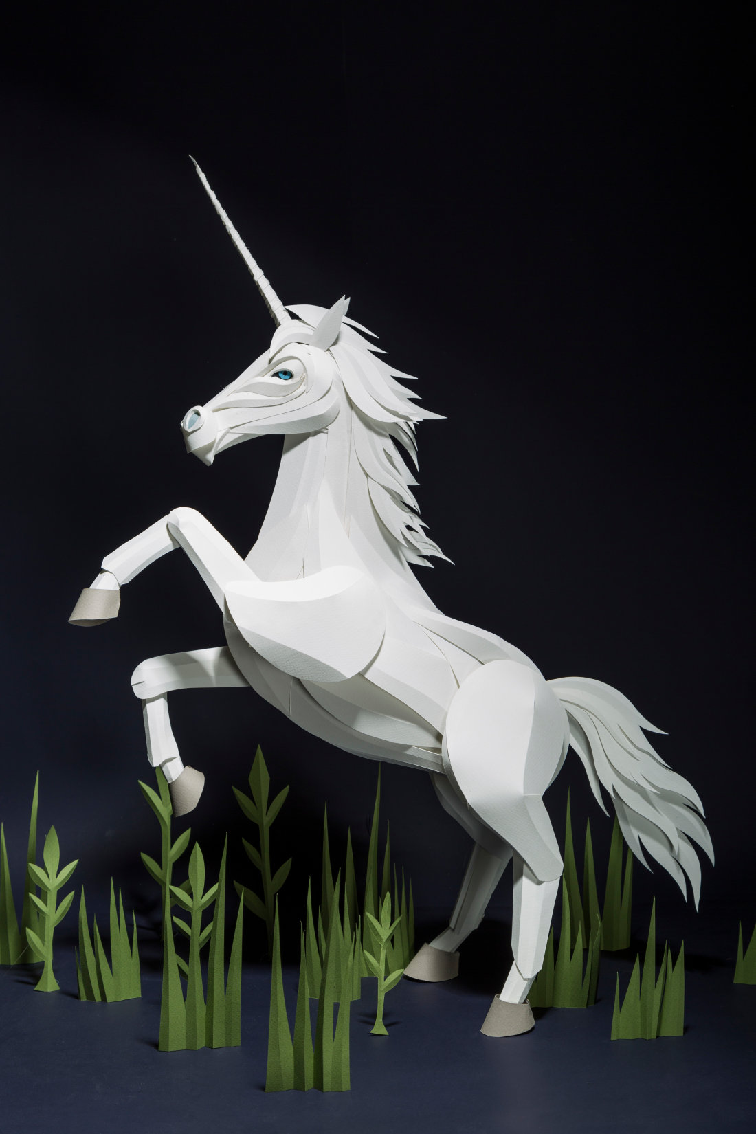 unicorn harry potter wiki fandom powered by wikia