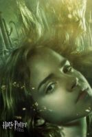 Goblet of fire poster (3)