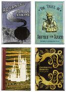 MinaLima Store - Magnet Set - Hogwarts Book Covers