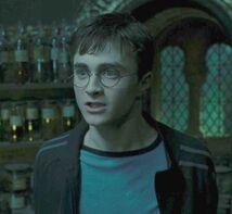 Harry5.6