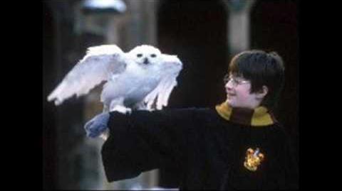 18. Leaving Hogwarts