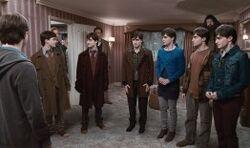 Siedem potterów