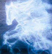 Gulla Wiltersen`s skytsverge er en hest