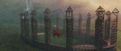 Quidditch pitch 2