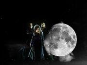 Bellatrix-Lestrange-bellatrix-lestrange-8147350-800-600