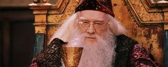 DumbledoreFirstYear