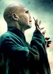Tom Riddle DHF2
