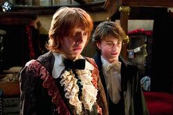 Ron's Dress Robes