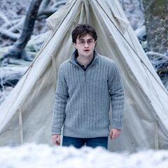 Гарри возле палатки