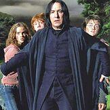 Piton protegge Hermione Ron e Harry dal lupo mannaro