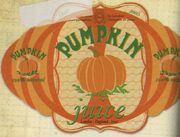 Pumpkin Juice2