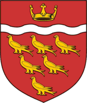 E Sussex arms