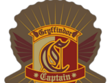 Capitão de Quadribol de Hogwarts