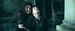 Harry-potter-deathly-hallows1 harry bellatrix
