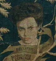 Bellatrix Stammbaum