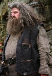 Hagrid OP