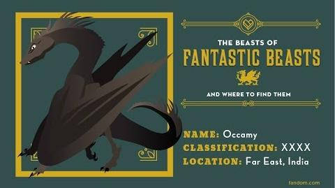 What Is An Occamy? The Beasts Of Fantastic Beasts And Where To Find Them