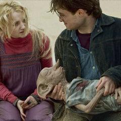 Окончание фильма: Добби умирает