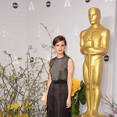Эмма на кинопремии «Оскар» (2014)