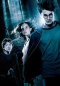 18. Ron, Hermione & Harry