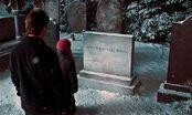 Гарри и Гермиона кладбище