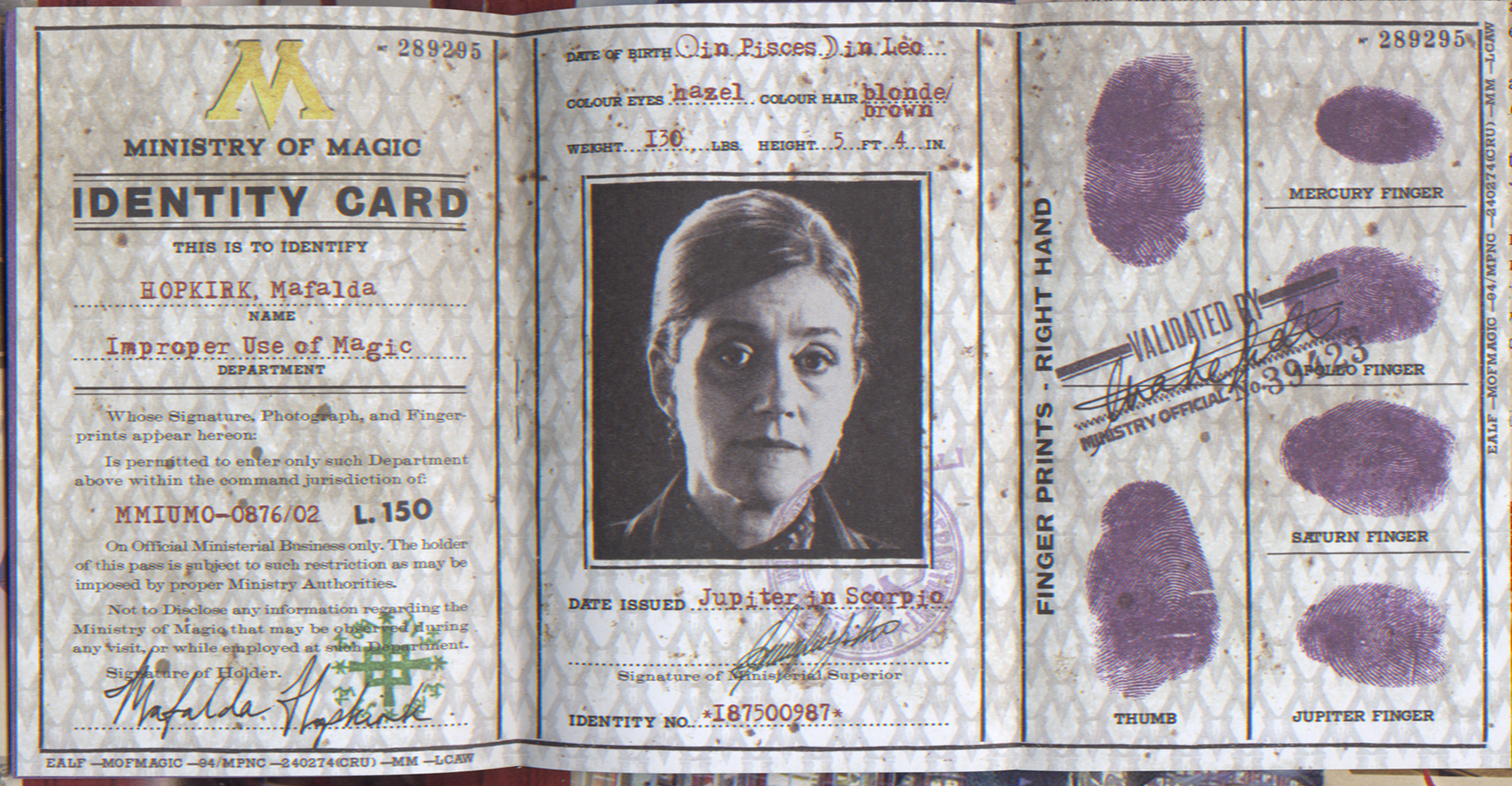 ministry of magic identity card harry potter wiki