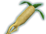 Stewed Mandrake