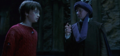 Harry and quirrell.png