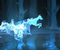 IbizanHound-patronus