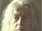Garrick Ollivander
