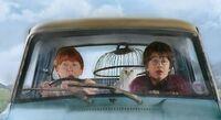 Harry et Ron dans la voiture