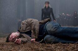 HP7 Dead Harry