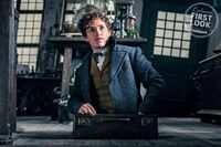 EW-Crimes of Grindelwald exclusive first look