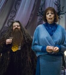 Hagrid-et-madame-olympe-maxime 70728 w460