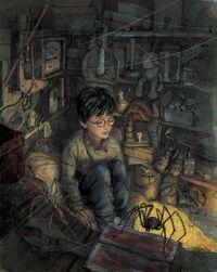 Harry Potter (Jim Kay)