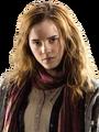Hermione Granger HS TDH.png