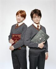 PromoHP1 Ron Weasley & Harry Potter