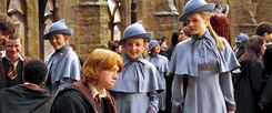 Fleur Delacour and Gabrielle Delacour talking to Ronald Weasley