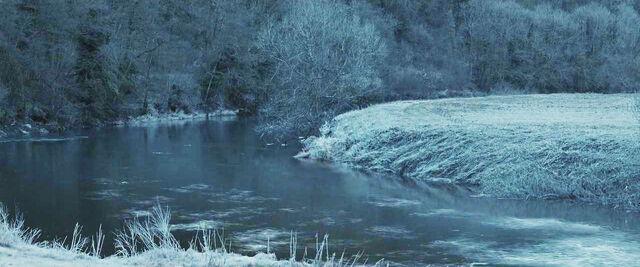 File:Forest of Dean.JPG