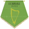 Kenmare Kestrels