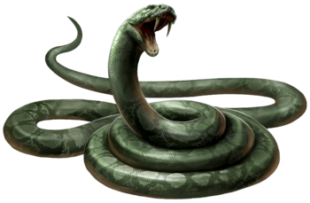 f3d8761fd Snake | Harry Potter Wiki | FANDOM powered by Wikia