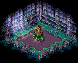 Greenhouse3 CoS-GBA